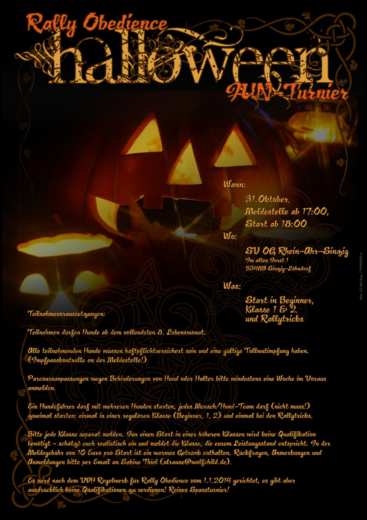 Rally Obedience Halloween FUN Turnier